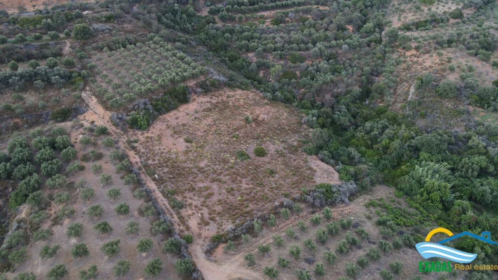 Large plot of land of 8.000 sq.m for sale in Exantis