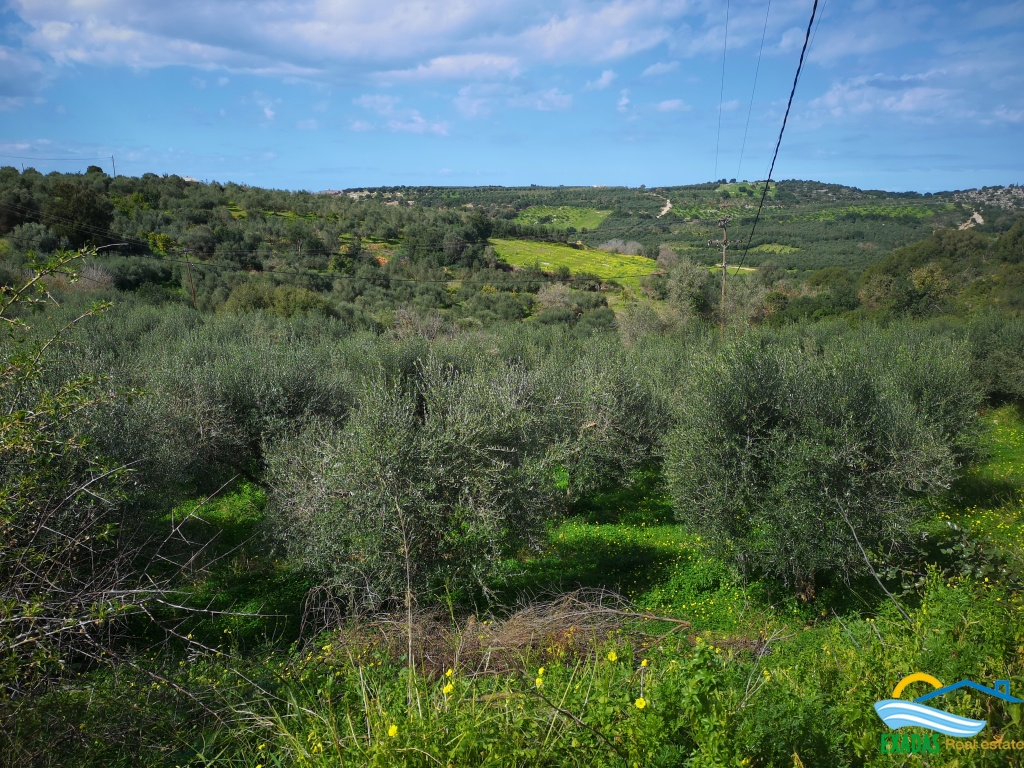 Large plot of land located in Achlades village, near Panormo and the beach