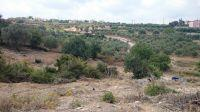 Large property of 10.500 sq.m with great views