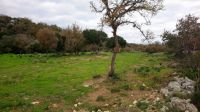 Plot of land of 1319 sq.m 5 min from Rethymnon  including building permission of 2 houses of 85 sq.m