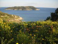 2 large peaces of Land with amazing views in Spetses island suitable for hotel, houses, etc